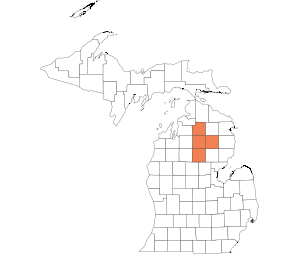 North Central Lower Peninsula
